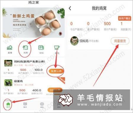 """鸡之家,新用户下载APP领""""饲料鸡"""",每天产1枚蛋,价值1元 黄了"""